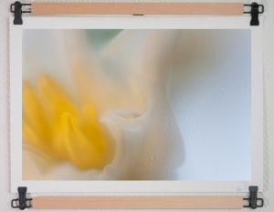 Rêveries, par Daniel Pierret photographe